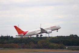 Love NRTさんが、成田国際空港で撮影したエア・インディア 787-8 Dreamlinerの航空フォト(飛行機 写真・画像)