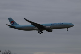 Love NRTさんが、成田国際空港で撮影した大韓航空 A330-323Xの航空フォト(飛行機 写真・画像)