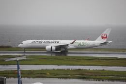 m_aereo_iさんが、羽田空港で撮影した日本航空 A350-941の航空フォト(飛行機 写真・画像)