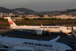 TOPAZ102さんが、伊丹空港で撮影した日本航空 A350-941の航空フォト(飛行機 写真・画像)