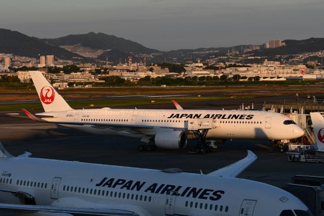 伊丹空港 - OsakNH39a International Airport [ITM/RJOO]で撮影された伊丹空港 - OsakNH39a International Airport [ITM/RJOO]の航空機写真(フォト・画像)