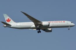 Deepさんが、成田国際空港で撮影したエア・カナダ 787-9の航空フォト(飛行機 写真・画像)