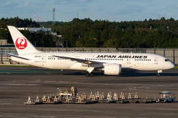 Tatsuya.Kさんが、成田国際空港で撮影した日本航空 787-8 Dreamlinerの航空フォト(飛行機 写真・画像)