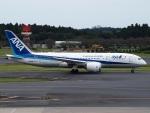 FT51ANさんが、成田国際空港で撮影した全日空 787-8 Dreamlinerの航空フォト(飛行機 写真・画像)