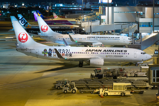 (新)ふぁんとむ改さんが、福岡空港で撮影した日本航空 737-846の航空フォト(飛行機 写真・画像)