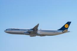 gomaさんが、フランクフルト国際空港で撮影したルフトハンザドイツ航空 A340-313Xの航空フォト(飛行機 写真・画像)