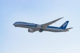 gomaさんが、フランクフルト国際空港で撮影した全日空 787-9の航空フォト(飛行機 写真・画像)