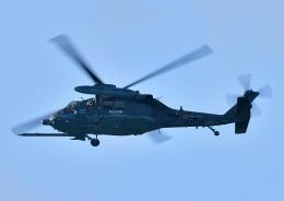 じーく。さんが、浜松基地で撮影した航空自衛隊 UH-60Jの航空フォト(飛行機 写真・画像)