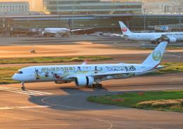 タミーさんが、羽田空港で撮影した日本航空 A350-941の航空フォト(飛行機 写真・画像)
