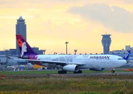 タミーさんが、成田国際空港で撮影したハワイアン航空 A330-243の航空フォト(飛行機 写真・画像)