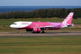 TAKAHIDEさんが、新潟空港で撮影したピーチ A320-251Nの航空フォト(飛行機 写真・画像)