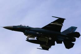 てくろくさんが、岐阜基地で撮影した航空自衛隊 F-2Aの航空フォト(飛行機 写真・画像)