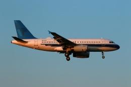 採れたてほしいもさんが、成田国際空港で撮影したユナイテッド航空 A319-132の航空フォト(飛行機 写真・画像)