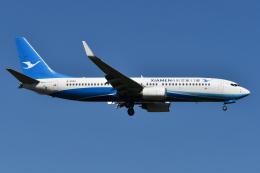 Deepさんが、成田国際空港で撮影した厦門航空 737-84Pの航空フォト(飛行機 写真・画像)