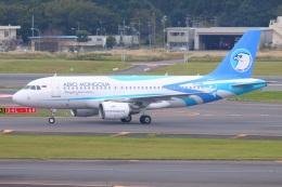 S.Hayashiさんが、成田国際空港で撮影したアエロ・モンゴリア A319-112の航空フォト(飛行機 写真・画像)
