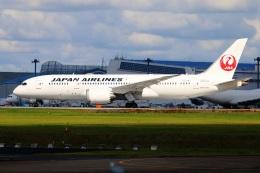 S.Hayashiさんが、成田国際空港で撮影した日本航空 787-8 Dreamlinerの航空フォト(飛行機 写真・画像)