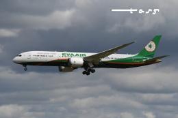 tassさんが、成田国際空港で撮影したエバー航空 787-9の航空フォト(飛行機 写真・画像)