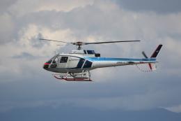 もぐ3さんが、新潟空港で撮影した中日本航空 AS350B Ecureuilの航空フォト(飛行機 写真・画像)