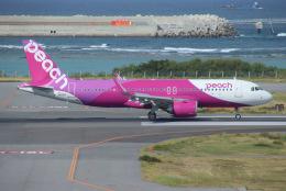 えのびよーんさんが、那覇空港で撮影したピーチ A320-251Nの航空フォト(飛行機 写真・画像)