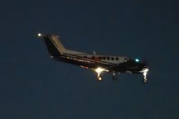 木人さんが、成田国際空港で撮影した日本法人所有 B200 Super King Airの航空フォト(飛行機 写真・画像)