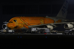 sepia2016さんが、成田国際空港で撮影した全日空 A380-841の航空フォト(飛行機 写真・画像)