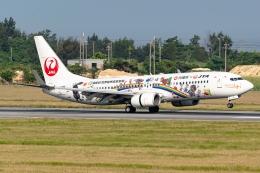 Ariesさんが、宮古空港で撮影した日本トランスオーシャン航空 737-800の航空フォト(飛行機 写真・画像)