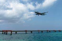Ariesさんが、下地島空港で撮影したジェットスター・ジャパン A320-232の航空フォト(飛行機 写真・画像)