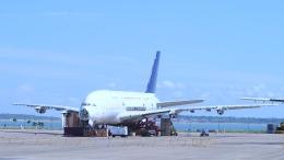 Seiiさんが、シンガポール・チャンギ国際空港で撮影したシンガポール航空 A380-841の航空フォト(飛行機 写真・画像)