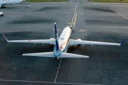 Ariesさんが、那覇空港で撮影した全日空 737-881の航空フォト(飛行機 写真・画像)