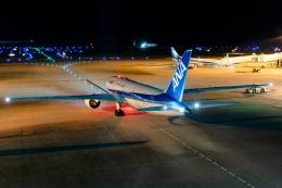 Ariesさんが、那覇空港で撮影した全日空 787-8 Dreamlinerの航空フォト(飛行機 写真・画像)
