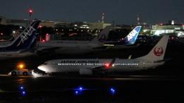 誘喜さんが、羽田空港で撮影した日本航空 737-846の航空フォト(飛行機 写真・画像)