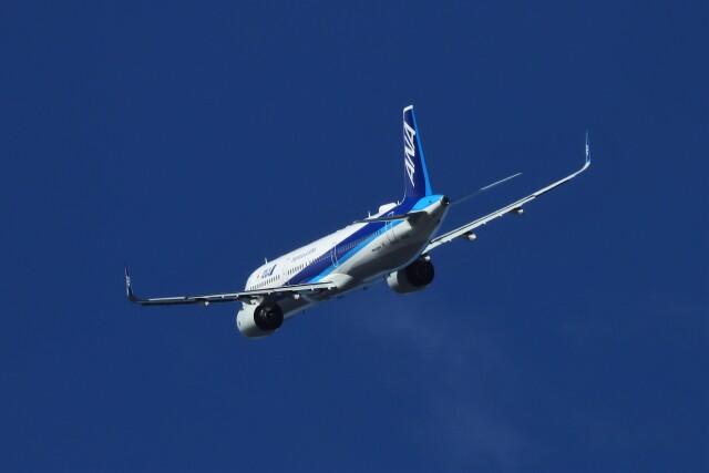 航空フォト:JA151A 全日空 A321neo
