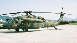 航空見聞録さんが、八尾空港で撮影した陸上自衛隊 UH-60JAの航空フォト(飛行機 写真・画像)