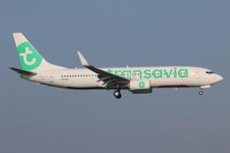 NIKEさんが、アムステルダム・スキポール国際空港で撮影したトランサヴィア 737-8K2の航空フォト(飛行機 写真・画像)
