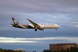ゆーすきんさんが、成田国際空港で撮影したニュージーランド航空 787-9の航空フォト(飛行機 写真・画像)