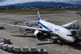 TOPAZ102さんが、伊丹空港で撮影した全日空 787-8 Dreamlinerの航空フォト(飛行機 写真・画像)