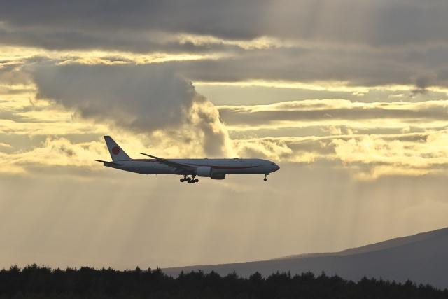 ほのことさんが、新千歳空港で撮影した航空自衛隊 777-3SB/ERの航空フォト(飛行機 写真・画像)