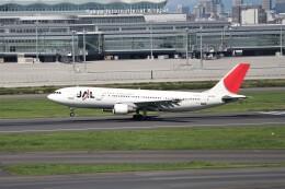 もぐ3さんが、羽田空港で撮影した日本航空 A300B4-622Rの航空フォト(飛行機 写真・画像)