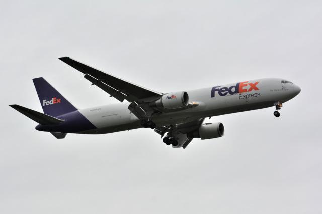 アルビレオさんが、成田国際空港で撮影したフェデックス・エクスプレス 767-3S2F/ERの航空フォト(飛行機 写真・画像)
