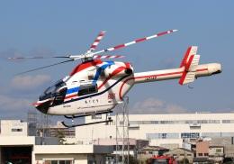 LOTUSさんが、八尾空港で撮影した朝日新聞社 MD 900/902の航空フォト(飛行機 写真・画像)