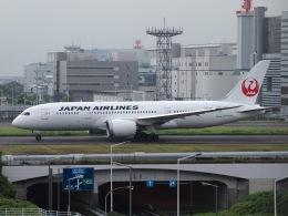 FT51ANさんが、羽田空港で撮影した日本航空 787-8 Dreamlinerの航空フォト(飛行機 写真・画像)