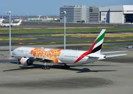 じーく。さんが、羽田空港で撮影したエミレーツ航空 777-31H/ERの航空フォト(飛行機 写真・画像)