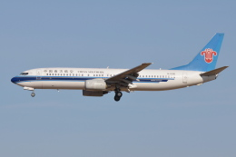 Deepさんが、成田国際空港で撮影した中国南方航空 737-81Bの航空フォト(飛行機 写真・画像)