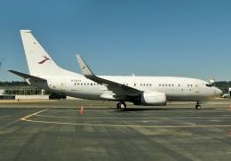 TA27さんが、ボーイングフィールドで撮影した金鹿航空 737-73W BBJの航空フォト(飛行機 写真・画像)