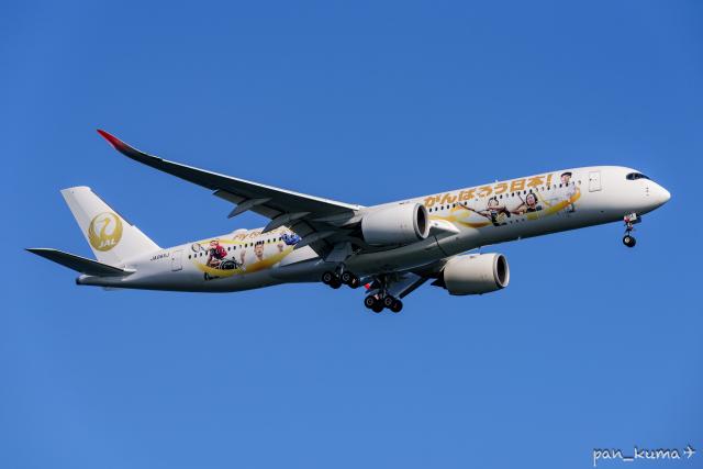 pan_kumaさんが、羽田空港で撮影した日本航空 A350-941の航空フォト(飛行機 写真・画像)