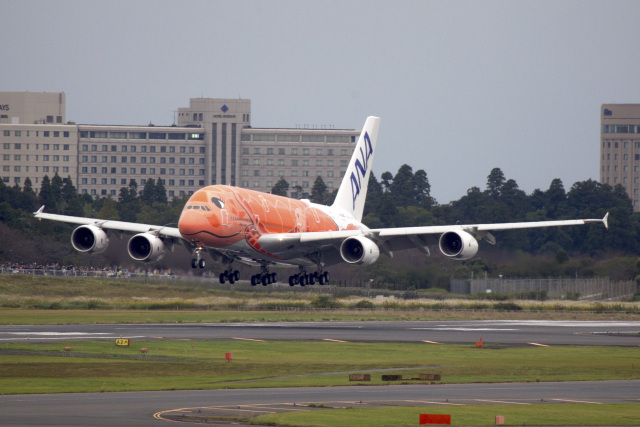 maverickさんが、成田国際空港で撮影した全日空 A380-841の航空フォト(飛行機 写真・画像)