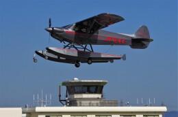 mild lifeさんが、八尾空港で撮影したニセコ・アビエーション CC19-180 XCubの航空フォト(飛行機 写真・画像)