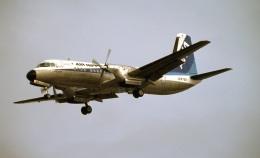 LEVEL789さんが、伊丹空港で撮影したエアーニッポン YS-11A-213の航空フォト(飛行機 写真・画像)