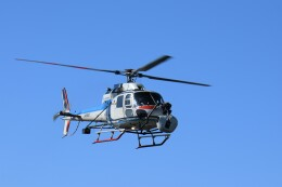 ヘリオスさんが、東京ヘリポートで撮影した中日本航空 AS355F2 Ecureuil 2の航空フォト(飛行機 写真・画像)