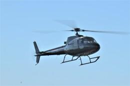 ヘリオスさんが、東京ヘリポートで撮影した日本法人所有 AS350B Ecureuilの航空フォト(飛行機 写真・画像)